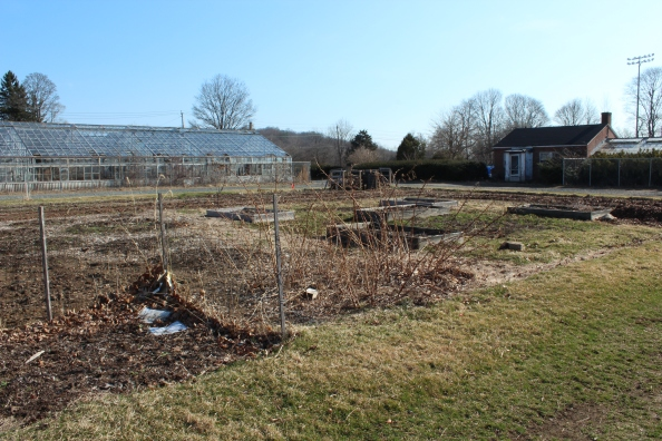 Learning Garden: pre-season (March 2012)