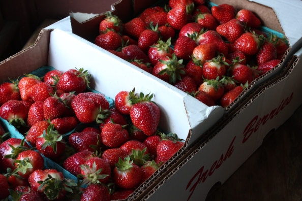 Fresh and local strawberries