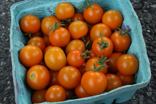 Sungold cherry toms from the LG