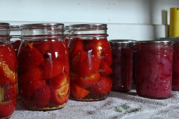 Pickled hot peppers next to pickled red onions