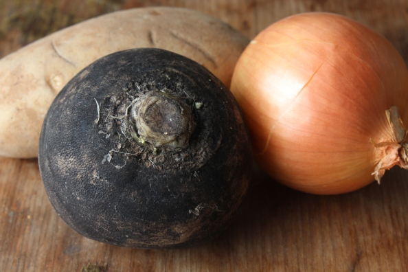 Russet potato, black radish, and onion