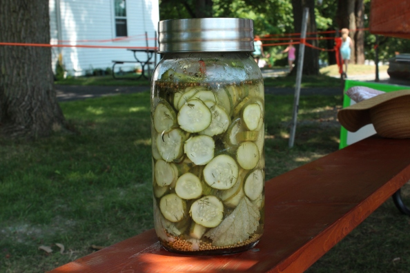 Overnight dill pickles after brining 24 hours